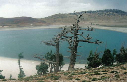 Aguelmame Sidi Ali, a Ramsar site, Middle Atlas