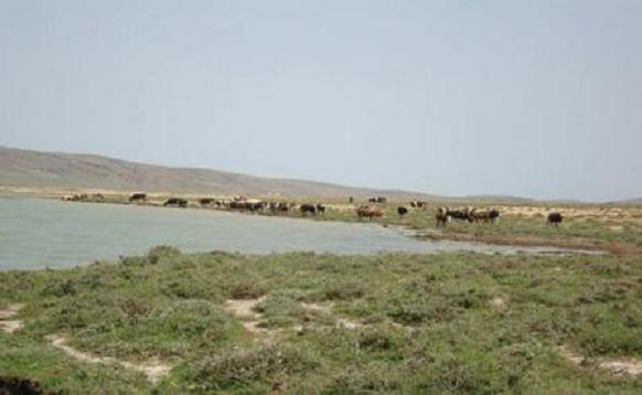 Garaet Timerganine, Oum El-Bouaghi, Algerian highlands