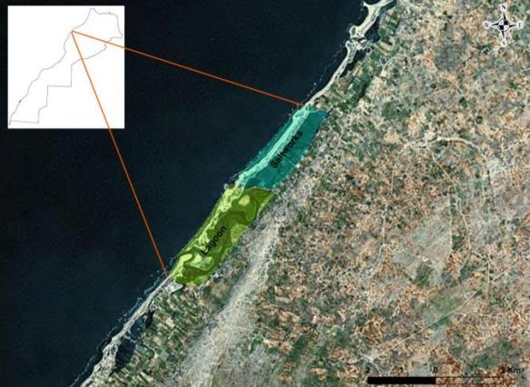Sidi Moussa lagoon and salines
