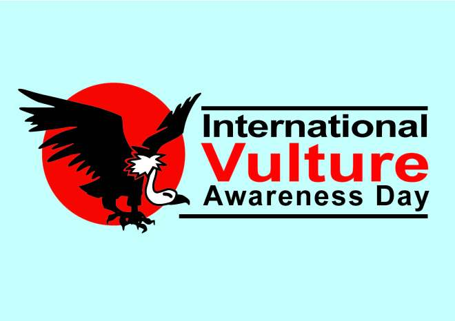 International Vulture Awareness Day in the Maghreb