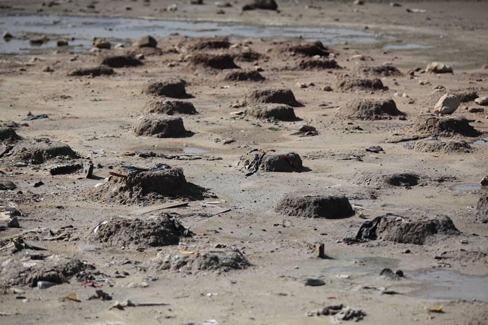Le nouveau site de nidification du Flamant rose (Phoenicopterus roseus), l'ouest de l'Algérie