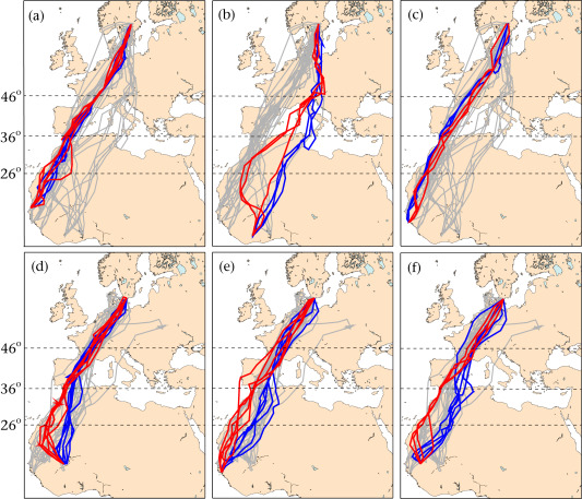 Maps showing the routes of eight adult ospreys (first row) and six adult marsh harriers (second row) that completed at least one round trip between the breeding grounds in Sweden and the wintering quarters in West Africa during 1996–2012