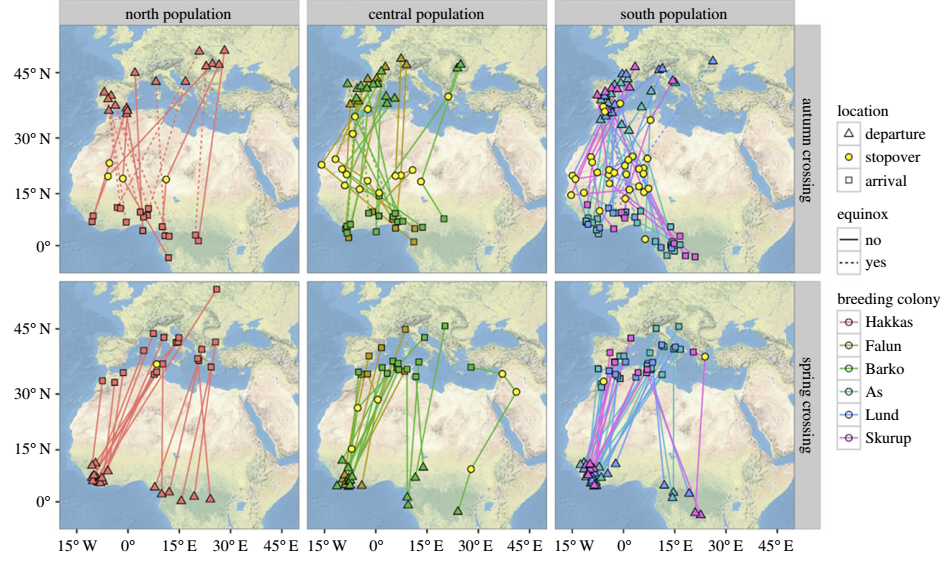 Map of stopover areas before initiating migration across the Sahara Desert (triangles), stopover areas on passage (filled yellow circles) and stopover or final wintering areas at arrival after crossing the barrier (squares), for different populations of common swifts breeding in north, central and south Sweden as recorded for spring and autumn by miniature geolocators.